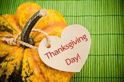 Día de Acción de Gracias, todavía de la calabaza vida Fotos de archivo libres de regalías