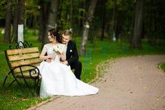 Día de boda: la novia y el novio hermosos se sientan en el banco en el parque Imagen de archivo
