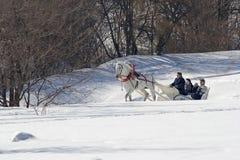 Día de fiesta de invierno Foto de archivo