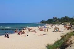Día de fiesta de la playa del verano en el banco del mar Báltico Imagenes de archivo