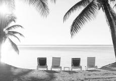 Día de fiesta Deckchairs de la playa blanco y negro foto de archivo libre de regalías