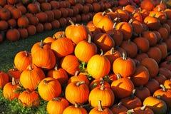 Día de fiesta del otoño Foto de archivo libre de regalías