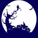 Día de fiesta Halloween, árbol, búho, calabaza, silueta azul en pizca Imagenes de archivo