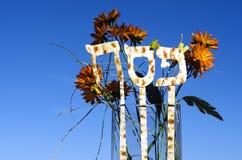 Día de fiesta judío de la pascua judía Fotografía de archivo