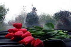 Día de fiesta lluvioso fotografía de archivo