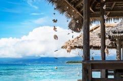Día de fiesta tropical Imagenes de archivo