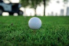 Día de golf La pelota de golf está en la camiseta para una pelota de golf en el gree Fotografía de archivo libre de regalías