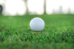 Día de golf La pelota de golf está en la camiseta para una pelota de golf en el gree Fotos de archivo