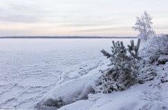 Día de invierno al lado del lago Foto de archivo libre de regalías