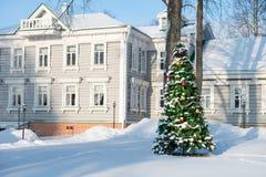 Día de invierno de la Navidad Foto de archivo
