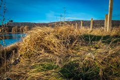 Día de invierno en el lago Foto de archivo libre de regalías