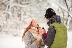 Día de invierno en el parque Foto de archivo libre de regalías