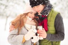 Día de invierno en el parque Fotos de archivo libres de regalías