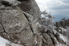 Día de invierno en las montañas Foto de archivo libre de regalías