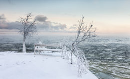 Día de invierno escarchado al lado del lago Fotografía de archivo libre de regalías