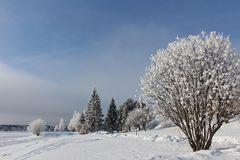 Día de invierno escarchado en LuleÃ¥ Fotos de archivo libres de regalías