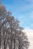 Día de invierno frío Imagenes de archivo