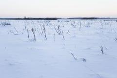 Día de invierno frío Fotografía de archivo