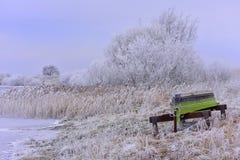 Día de invierno frío con la gran luz Fotografía de archivo libre de regalías