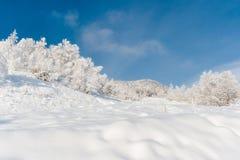 Día de invierno frío, muy soleado Foto de archivo