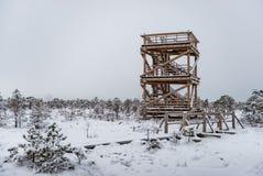 Día de invierno Nevado en el pantano Pequeños árboles y atalaya del pantano fotos de archivo