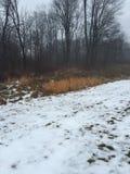 Día de inviernos Fotografía de archivo