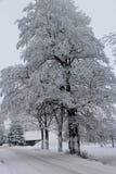 día de inviernos frío Fotos de archivo