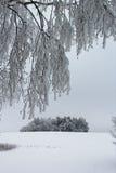 día de inviernos frío Imagenes de archivo