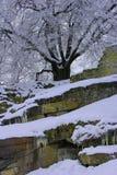 día de inviernos frío Imagen de archivo libre de regalías
