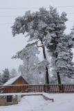 día de inviernos frío Fotos de archivo libres de regalías