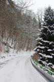 día de inviernos frío Imágenes de archivo libres de regalías