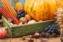 Día de la acción de gracias: Bandeja de diversas verduras del otoño Fotos de archivo libres de regalías