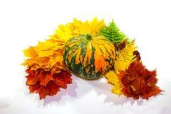 Día de la acción de gracias Bandera de la acción de gracias con las hojas y la calabaza de otoño Foto de archivo