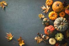 Día de la acción de gracias o fondo otoñal estacional con las calabazas a Imagen de archivo libre de regalías