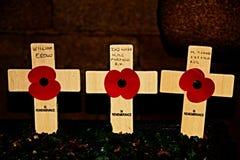 Día de la amapola de domingo de la conmemoración Imagen de archivo libre de regalías