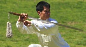 Día de la Ji-Qigong del Tai del mundo en Central Park Foto de archivo libre de regalías