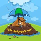 Día de la marmota feliz y lluvia Imagen de archivo libre de regalías