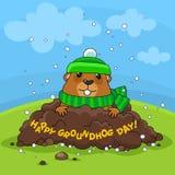 Día de la marmota feliz y nieve Fotografía de archivo libre de regalías