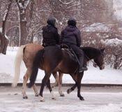 Día de la nieve del invierno de Moscú Rusia en un parque de la ciudad fotografía de archivo
