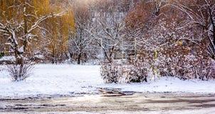 Día de la nieve en el parque Imágenes de archivo libres de regalías