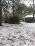 Día de la nieve de Georgia Foto de archivo libre de regalías