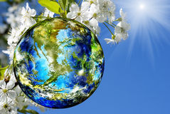 Día de la Tierra Imagen de archivo libre de regalías