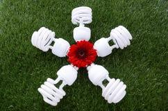 Día de la Tierra, el 22 de abril, concepto con las bombillas ahorros de energía Fotografía de archivo libre de regalías