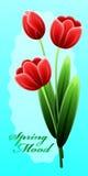 Día de madres feliz internacional con el manojo de flores de la primavera Fotos de archivo