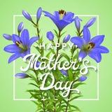 Día de madres feliz Tarjeta de felicitación con los lirios azules realistas La postal del día de madres con las flores y las letr Imágenes de archivo libres de regalías