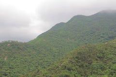 Día de niebla en Hong Pak Country Trail Imagen de archivo libre de regalías