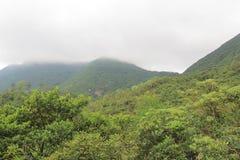 Día de niebla en Hong Pak Country Trail Fotos de archivo libres de regalías