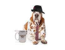 Día de padres divertido del perro fotos de archivo libres de regalías