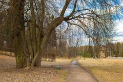 Día de primavera en el parque de Pavlovsk imagenes de archivo