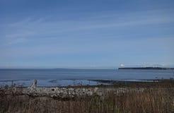Día de primavera temprano en la playa de la bahía del abedul Fotografía de archivo libre de regalías